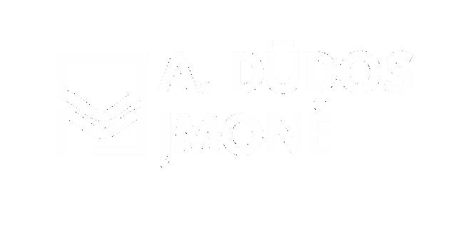 A. Dūdos įmonė